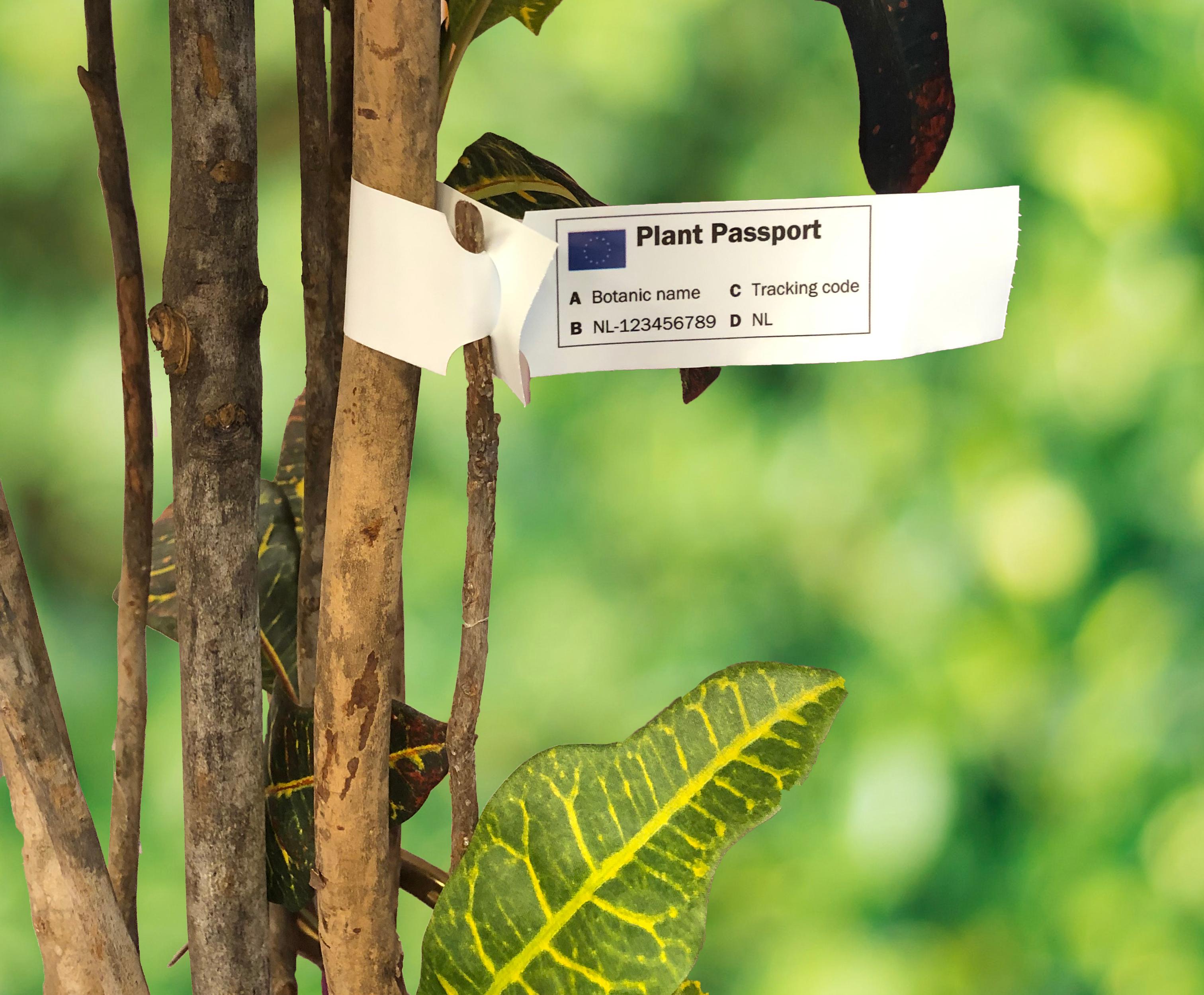Plantenpaspoort sleufetiketten