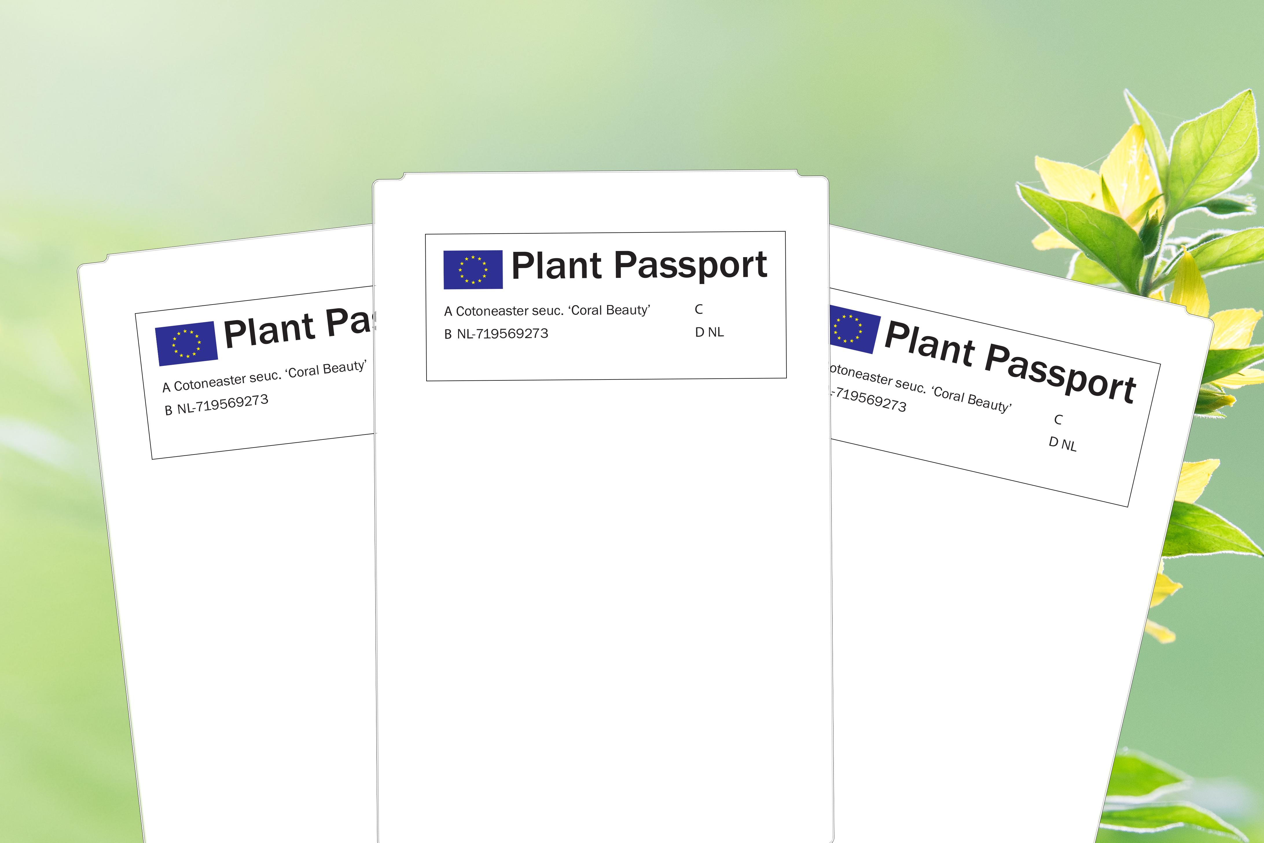 Voorbeeld Plantenpaspoort labels